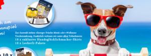 Gratis Hundefutterproben anfordern