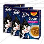 Gratisprobe Felix bestellen