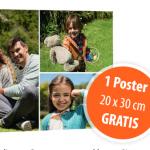 kostenlose Poster von Müller