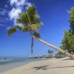 Strandtester werden