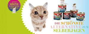 Futterprobe für Katzen kostenlos